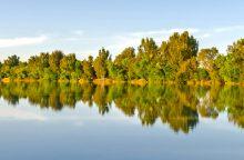 Lake Minden RV Resort